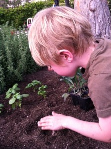 My son at age 4.5, helping me plant herbs and kale in Spring 2013