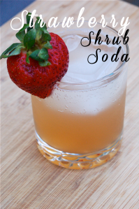 Strawberry Shrub Soda Recipe